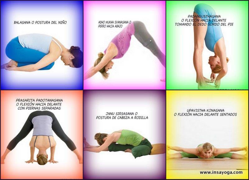Las flexiones hacia delante también favorecen el masaje y tonificación de los órganos internos y, por tanto, la desintoxicación.