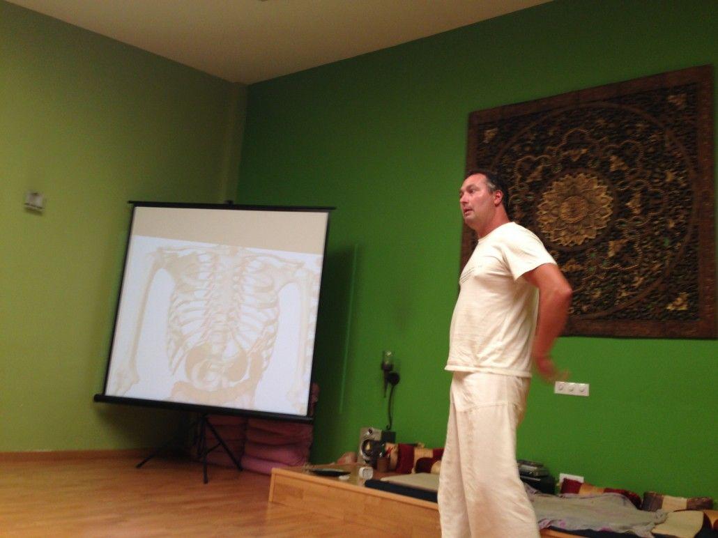 Taller de yoga anatómico con Joan Sendra: yoga para órganos internos.