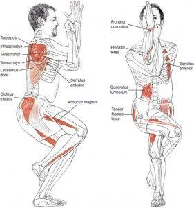 Garudasana o postura del águila es una postura que permite estirar y fortalecer brazos y piernas al mismo tiempo, a la vez que desarrolla el equilibrio.