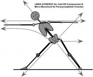 Las líneas de energía al realizar la postura del triángulo.