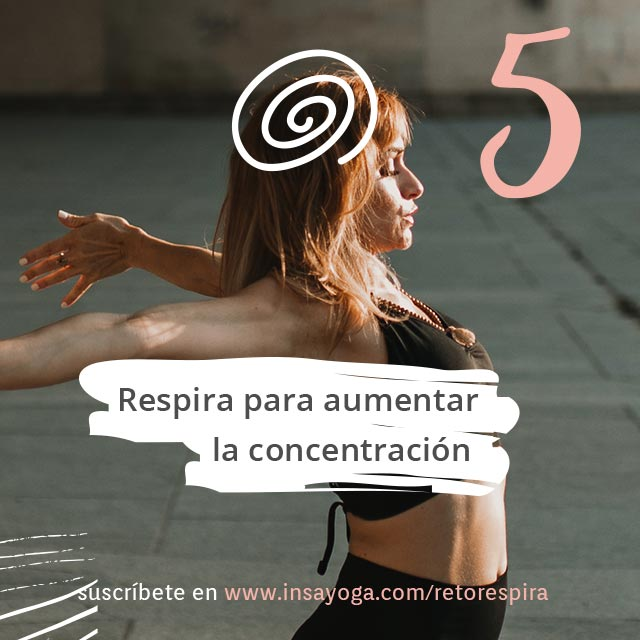 D5: Concentración